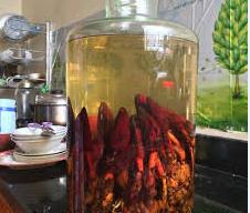 Cách ngâm rượu nấm ngọc cẩu (tỏa dương)